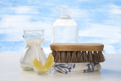 Bliss Home Care - Green Cleaning